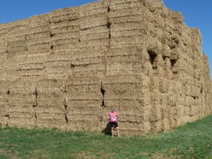 Take time to marvel at the biggest haystack in France